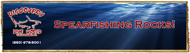 Spearfishing Tournament Banner