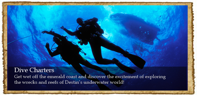 Destin Scuba Diving Shop- PADI 5 Star Dive Training Center ...