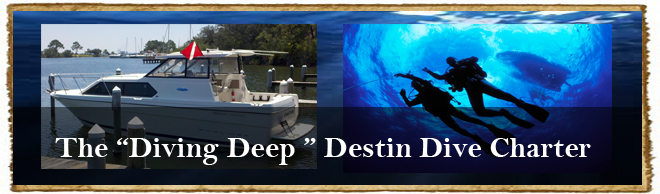 Local Destin Dive Charters