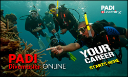 PADI Dive Master online course