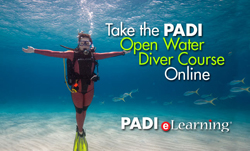 PADI open water course online