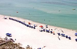 Destin FL Gulf Conditions - Discovery Dive World